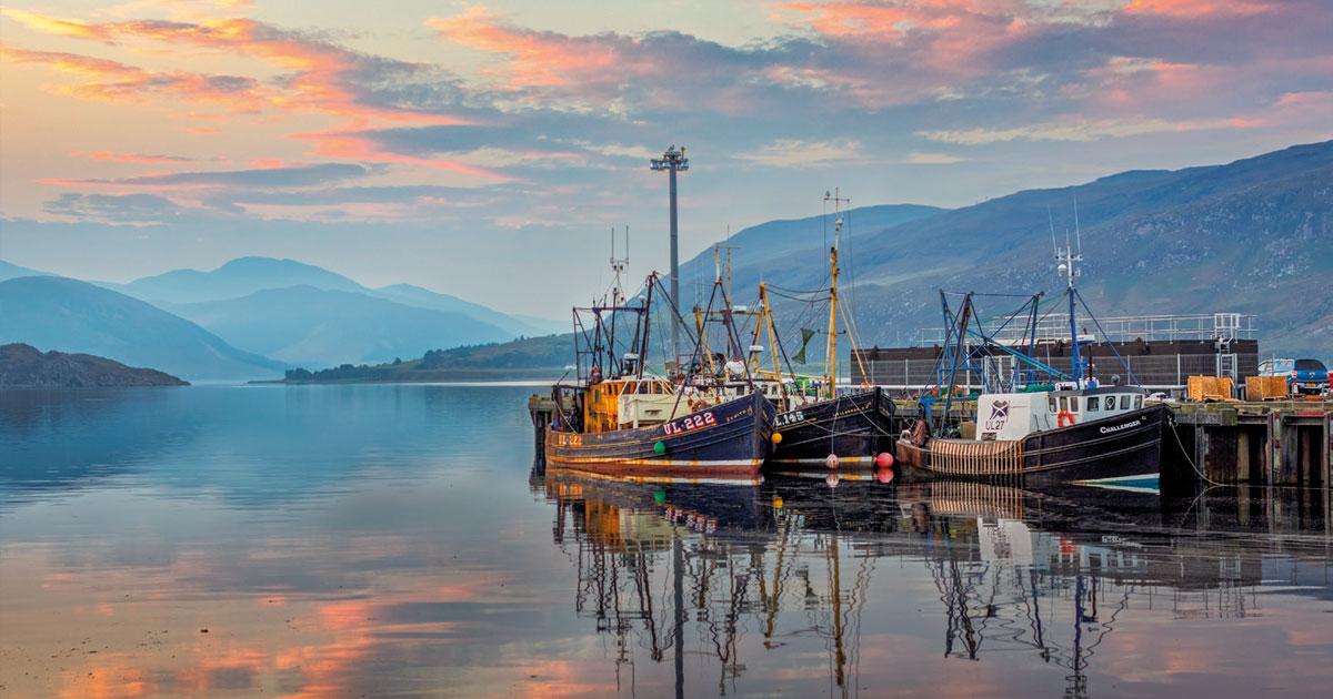 Bateaux de pêche dans le port d'Ullapool, Ecosse