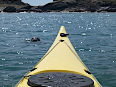 Sceau Kayak Challenge