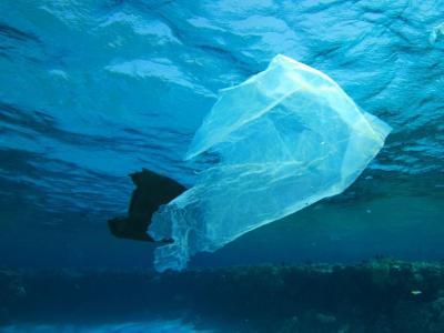 Sac en plastique sous l'eau