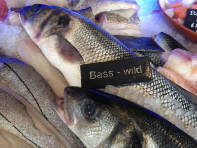 Bass_Market_M